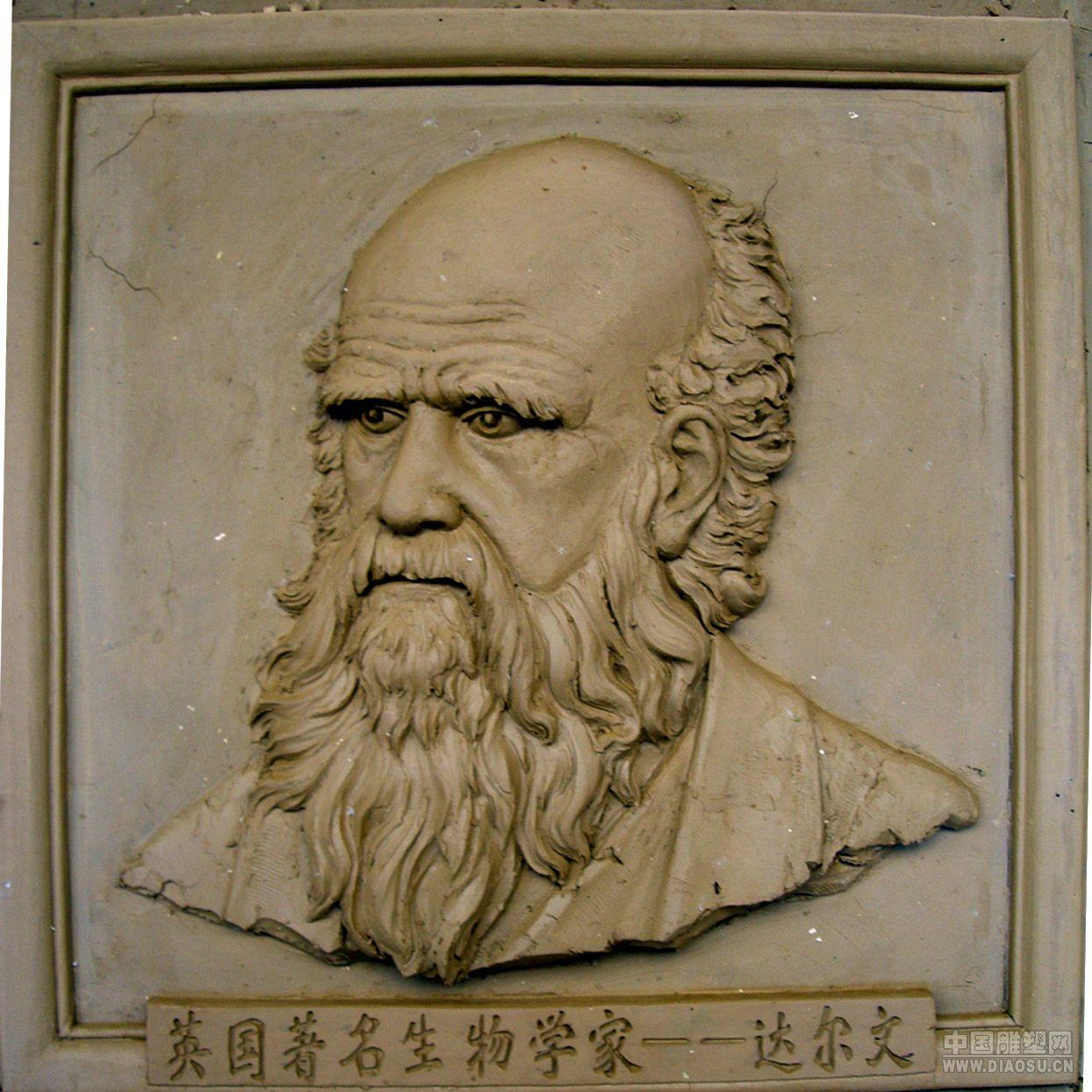 名人头像雕塑达尔文