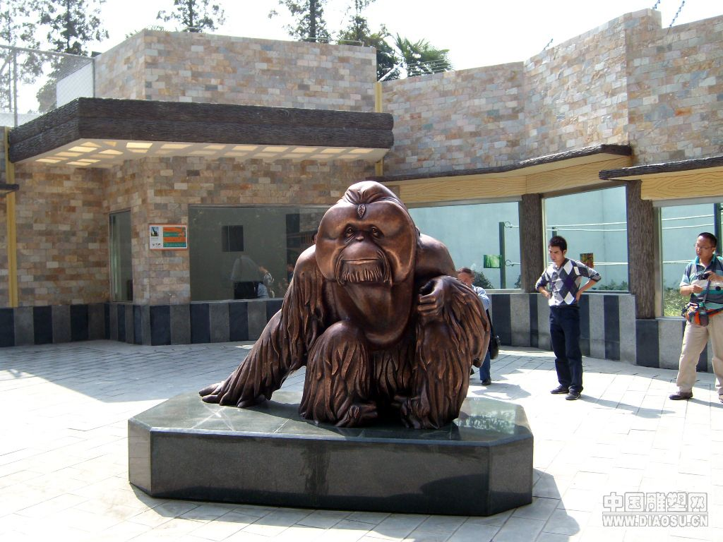 成都市动物园 猩猩-特里